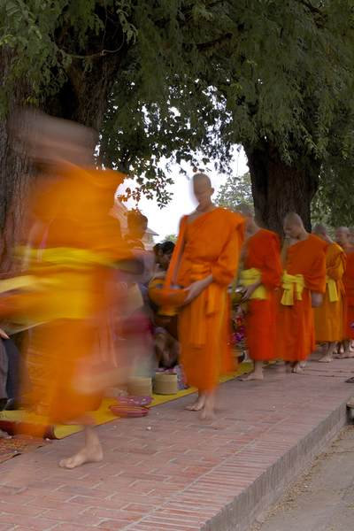Local people donate food and gifts to monks wearing their saffron robes during the early mornng (6.00am) alms collection by monks, walking to their temple along the main street (Sakkaline Road) in Luang Prabang in Laos