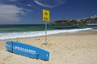 Warning sign and lifeguards surf board on the golden yellow sand of Bondi Beach in Sydney, New South Wales in Australia