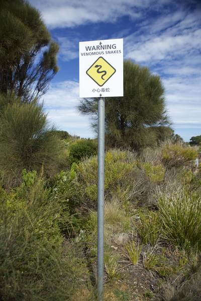 Yellow warning sign for snakes near the Twelve Apostles on the Great Ocean Road, in Victoria, Australia