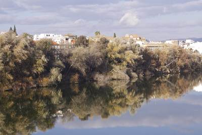 Reflections in the Rio Guadalquivir of the trees and buildings lining the Ronda de Isasa, viewed from the Roman Bridge in Cordoba, Andalusia, Spain, Europe
