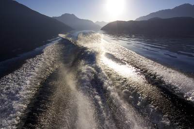 Boat wake on Lake Manapouri in the evening sun with Pomona Island to the right near Lake Te Anau in South Island in New Zealand