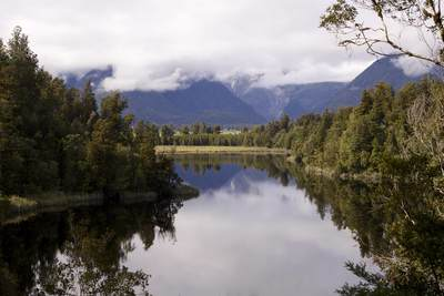 Trees are reflected in the still waters of Lake Matheson in Westland Tai Poutini National Park in South Island in New Zealand