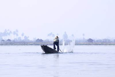 An Inle Lake fisherman in early morning mist, (a traditional 'leg rower' only found in Myanmar) beats the water to raise the fish to the surface, with palms and stilt houses in a village on the edge of the lake in Myanmar (Burma)