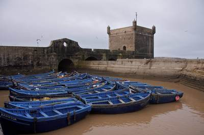 Cobalt blue fishing boats moored in muddy waters are protected by the  Skala du Porte and stone fortress of Essaouira in Morocco in Africa